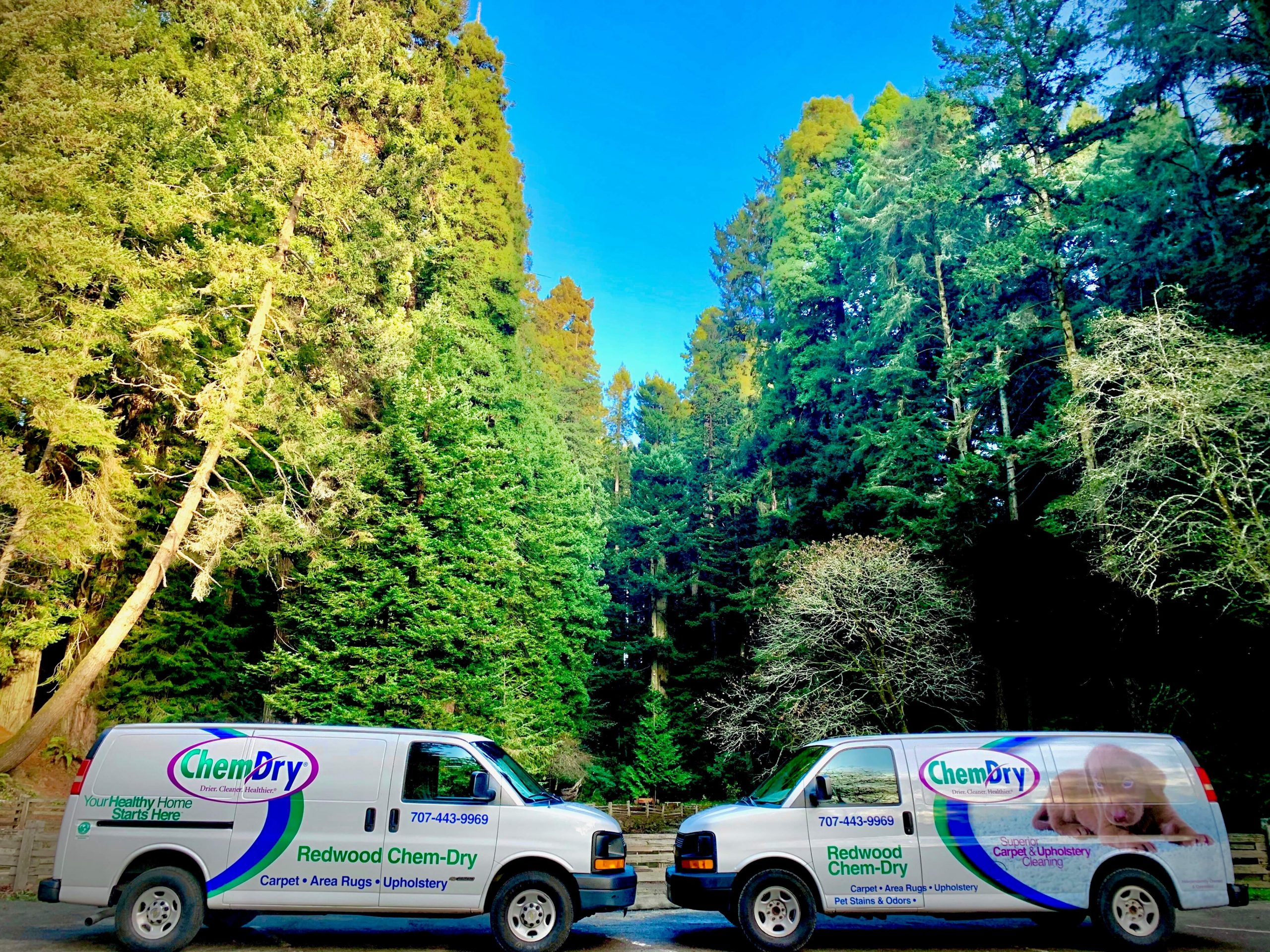 Redwood Chem-Dry service van and technician preparing for carpet cleaning service